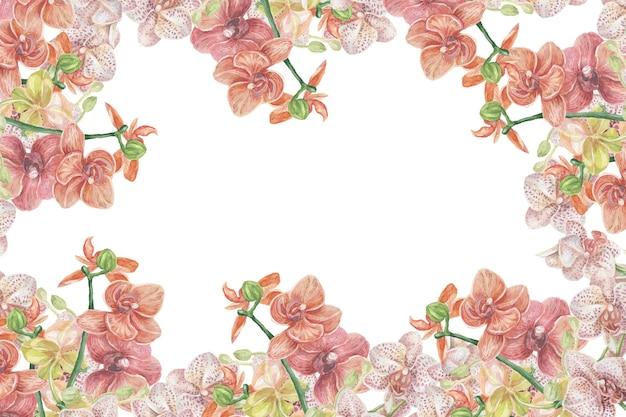 난초 꽃 이국적인 수채화 손으로 그린 삽화 인쇄 섬유 클립 아트 사실주의 식물학 페이트