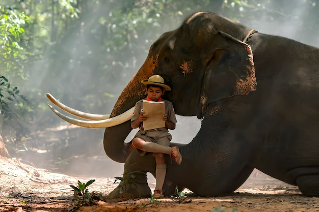An ordinary boy scout reading a book on the thai elephant trunk .
