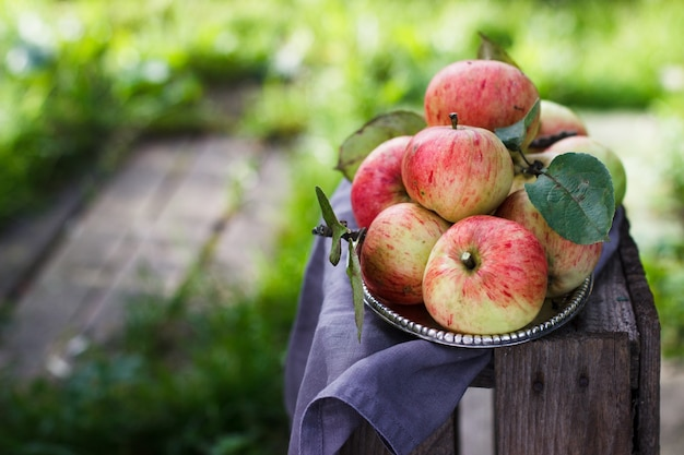 Organic apples in metal plate on a wood table. horizontal