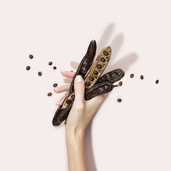 Organic carob pods, seeds on a pink background in a woman hand, locust bean healthy food, ceratonia siliqua harnup. natural vegan eating. creative food background. copy space. square. top view.