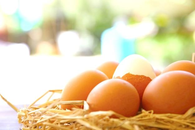 Органические куриные яйца на сухой траве с размытым фоном.