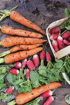 Органические грязные морковь и редис, недавно собранные в саду и положенные на доску