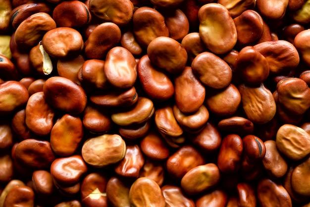 Органические сушеные бобы. текстура бобов fava vicia. здоровые пищевые ингредиенты. копировать пространство