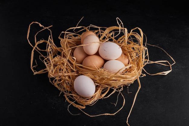 巣の中の有機卵。