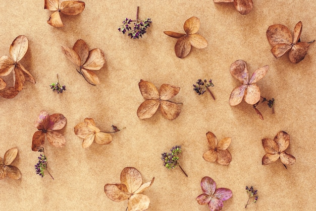 Organic floral background with dry flowers on brown craft paper