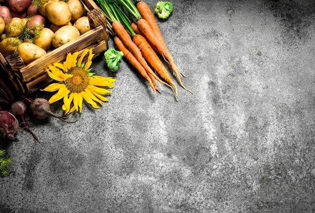 Органическая еда. собранные овощи на деревенском столе