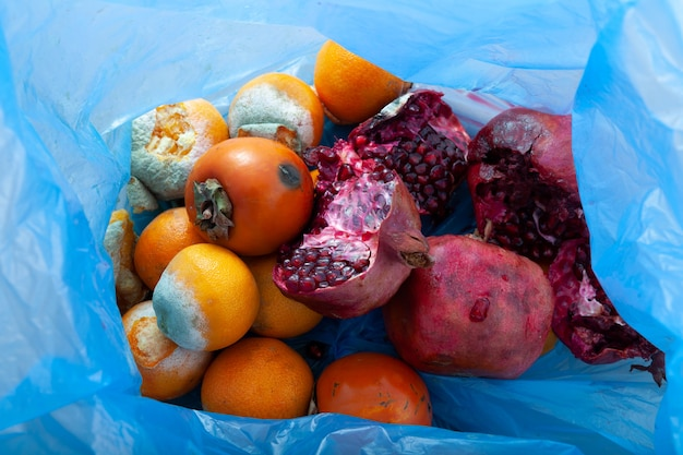 Organic food waste rotten fruits in trash can imperfect storage vegetable and fruits