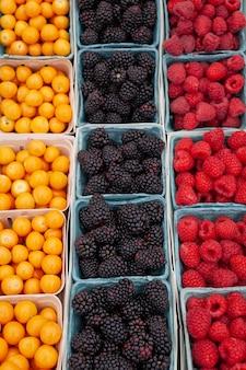 小さな青い段ボール箱に入った有機の新鮮な果実 アメリカの農場で果実を摘む 新鮮なジューシーなラズベリー ブラックベリー ホオズキをファーマーズ マーケットで販売 健康食品のコンセプト