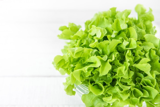 Organic green lettuce vegetable on white wooden kitchen counter