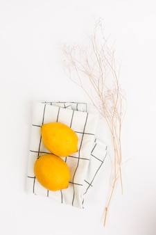 Organic lemon on napkin and twig over plain background