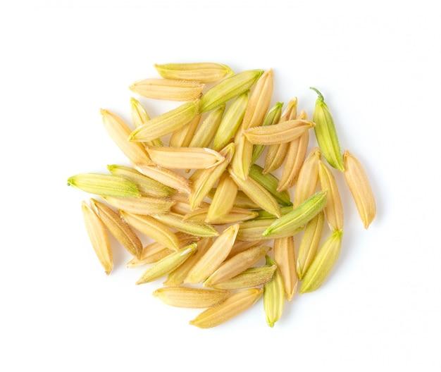 Органический вид сверху неочищенных рисов тайского жасмина