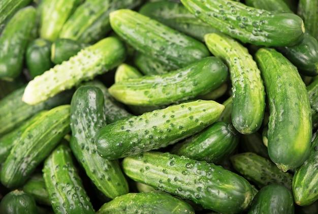 有機製品、健康食品、将来の使用のための収穫、野菜のピクルス、きゅうりのピクルス。背景として若いきゅうりがたくさん