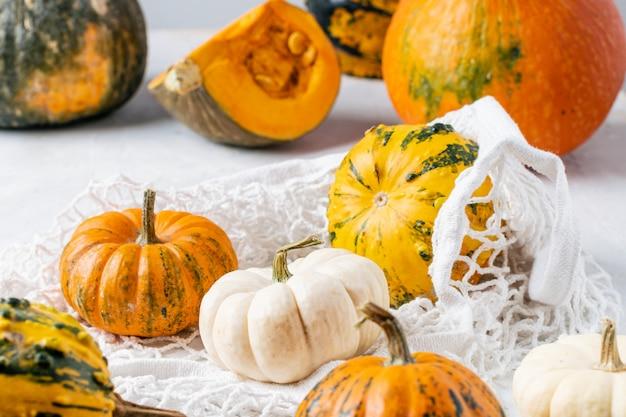Organic pumpkins assortment in mesh cotton bag