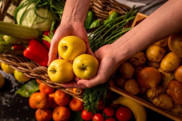 Органические овощи. руки фермеров со свежесобранными яблоками. свежие органические яблоки. фруктовый и овощной рынок