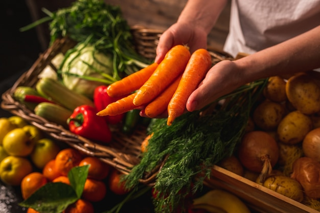 유기농 채소. 농부들은 갓 고른 당근을 손에 넣습니다. 신선한 유기농 당근. 과일 및 채소 시장