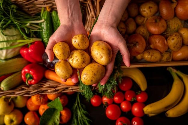 유기농 채소. 농부들은 갓 고른 야채를 손에 넣습니다. 신선한 유기농 감자. 과일 및 채소 시장