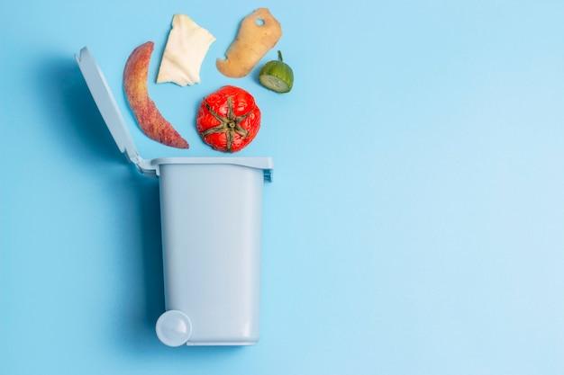 Органические отходы и мусорное ведро, концепция сортировки мусора, копировальное пространство