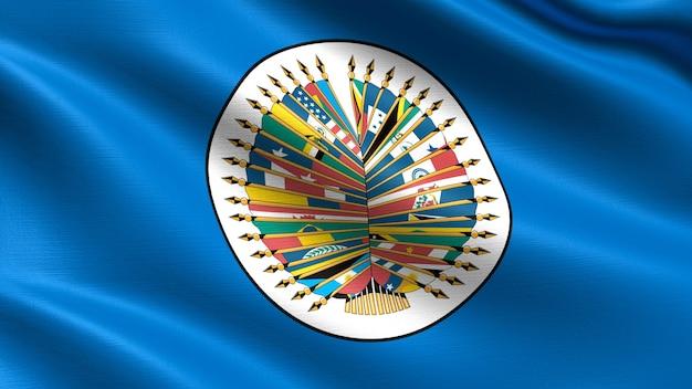 Organization of american states flag