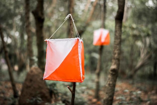 숲에서 야외 오리엔티어링 박스