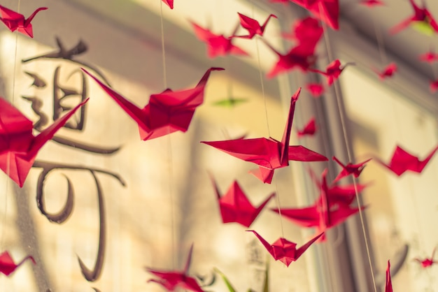 Origami cranes hangs on the ceiling