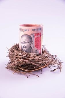 롤 인도 종이 화폐 메모와 함께 원래 새 둥지. 지폐로 시작하는 신사업