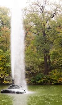 삼림 정원에서 높은 물 기둥을 공중으로 보내는 호수의 장식용 분수