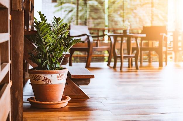 Декоративные растения в цветочном горшке в тайском доме местного стиля