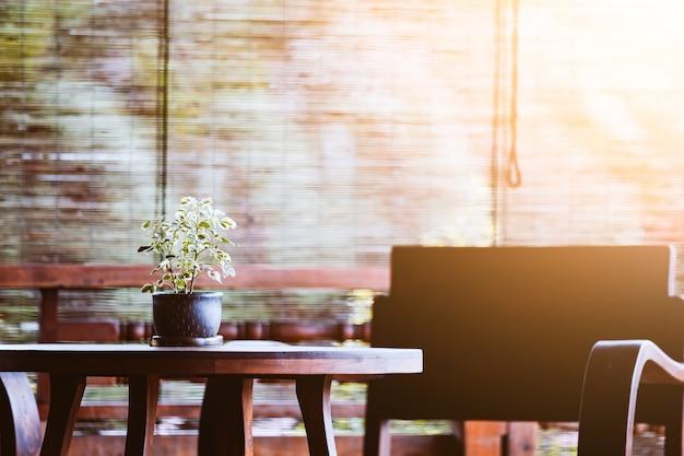 Декоративные растения в цветочном горшке на столе с деревянным стулом в стиле ретро