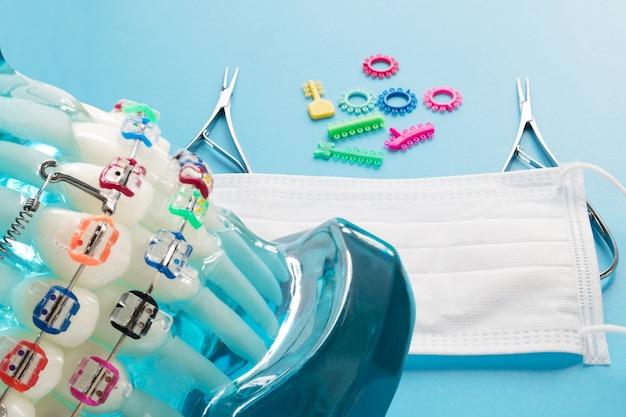 歯科矯正モデルと歯科医ツール-さまざまな歯科矯正ブラケットまたはブレースのデモンストレーション歯モデル