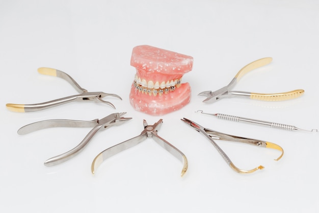 Orthodontic model and set of metallic medical orthodontic tools