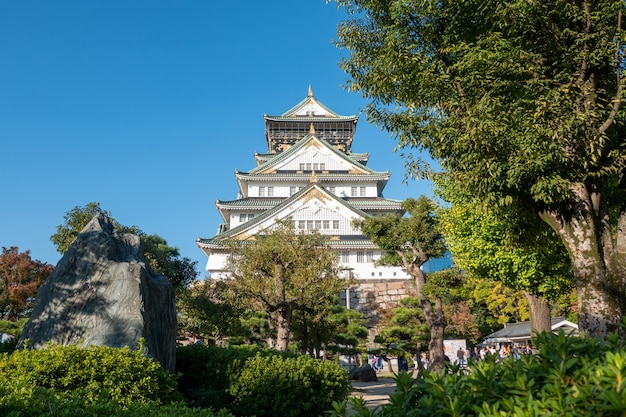 Osaka castle in osaka with autumn leaves. japan travel concept