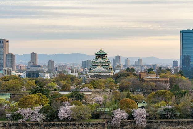 Osaka castle with cherry blossom and osaka center business dictrick in background atosaka, japan.