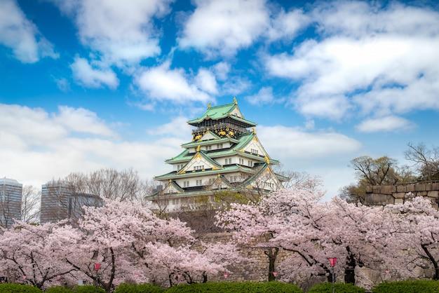Osaka castle with japanese cherry blossom garden and tourist sightseeing at osaka, japan.