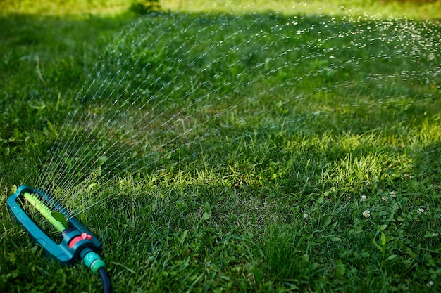 집 마당, 여름 또는 봄에 푸른 잔디 위에 물을 뿌리는 진동하는 정원 스프링클러