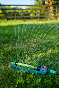 집에서 푸른 잔디 위에 물을 뿌리는 진동하는 정원 스프링클러