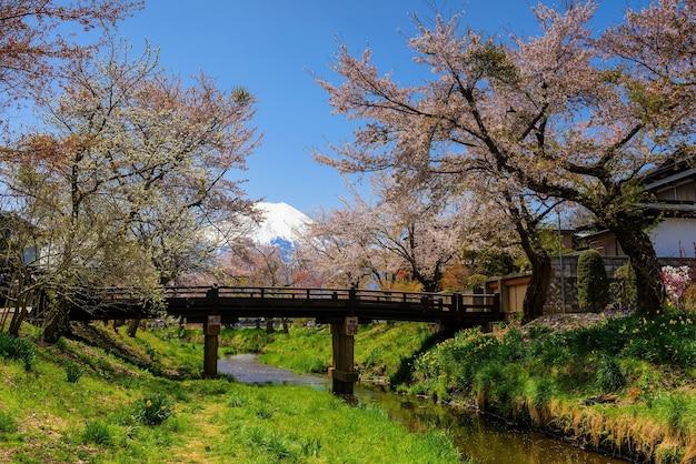 Oshino hakkai village with mt. fuji