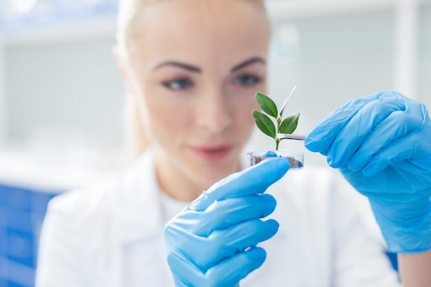 私たちの性質。ポジティブな賢い女性生物学者によって土壌に入れられている植物の選択的な焦点