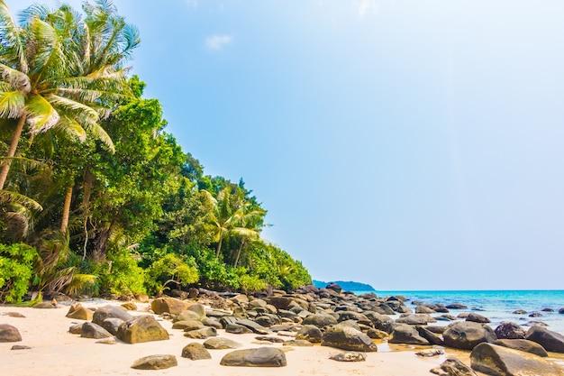 All'aperto caraibi cocco cielo paesaggio