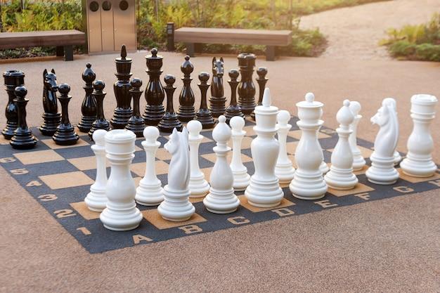 大きなプラスチック片が付いている屋外のチェス盤