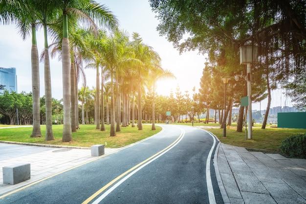 Асфальтированная дорожка в открытом городском парке