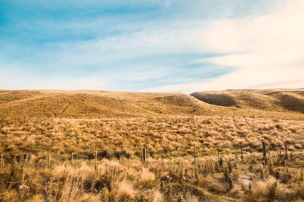 Открытый сельской местности луг трава природы. сельский пейзаж поля травы.