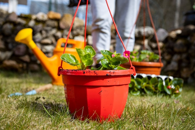 Outdoor hanging pot stands on the lawn well maintained garden concept