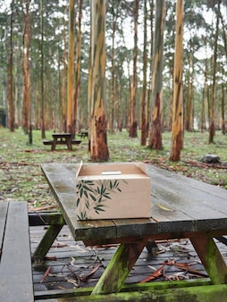 Outdoor picnic area with wooden tables and benches, trees and a cardboard box on the table.