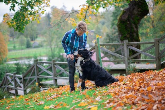バーニーズマウンテンドッグと少年の屋外の肖像画。ペットとティーンエイジャーの友情、秋の公園を歩く少年