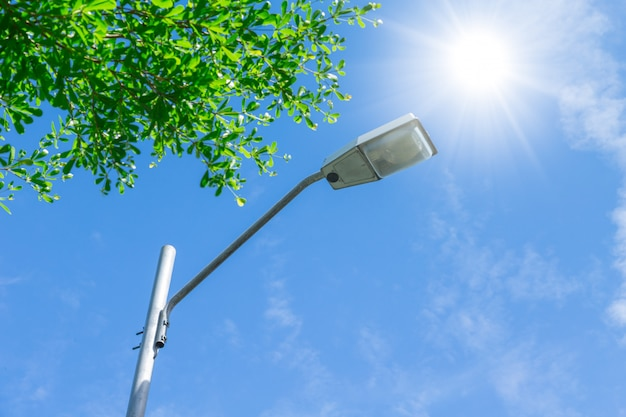 Outdoor road lamp on sunny day blue sky and green tree