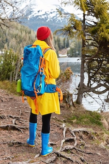 Outdoor shot of female tourist with backpack stands back, walks in coniferous forest