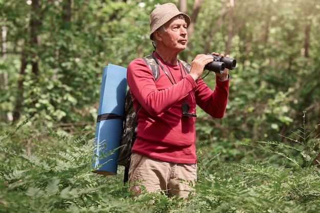 Outdoor shot of senior man with backpack and rug, holding binoculars, looking far away in forest, enjoying beautiful nature