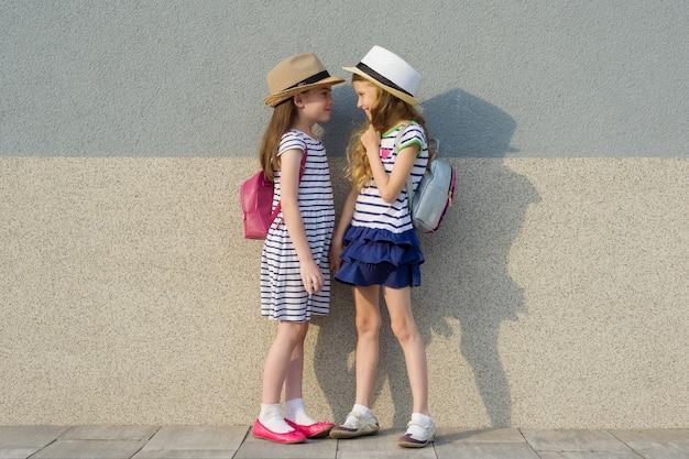 2つの幸せなガールフレンドの夏の屋外の肖像画