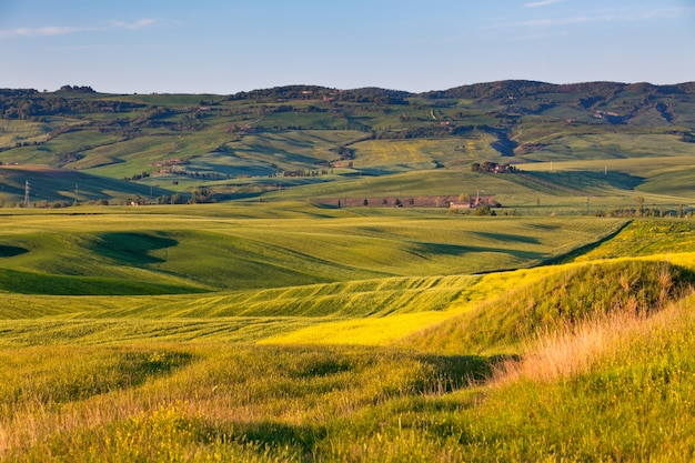 Outdoor tuscan gold hills landscape at sunset