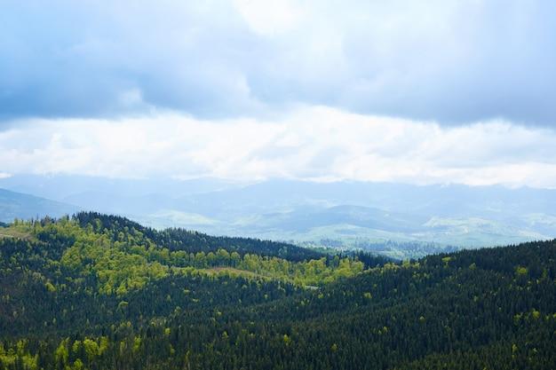 素晴らしい山の景色の外の風景。曇り空、丘は常緑の松の木でいっぱい、寒い曇りの天気